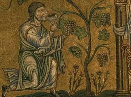 IN VINO FABULA Noé dans sa vigne